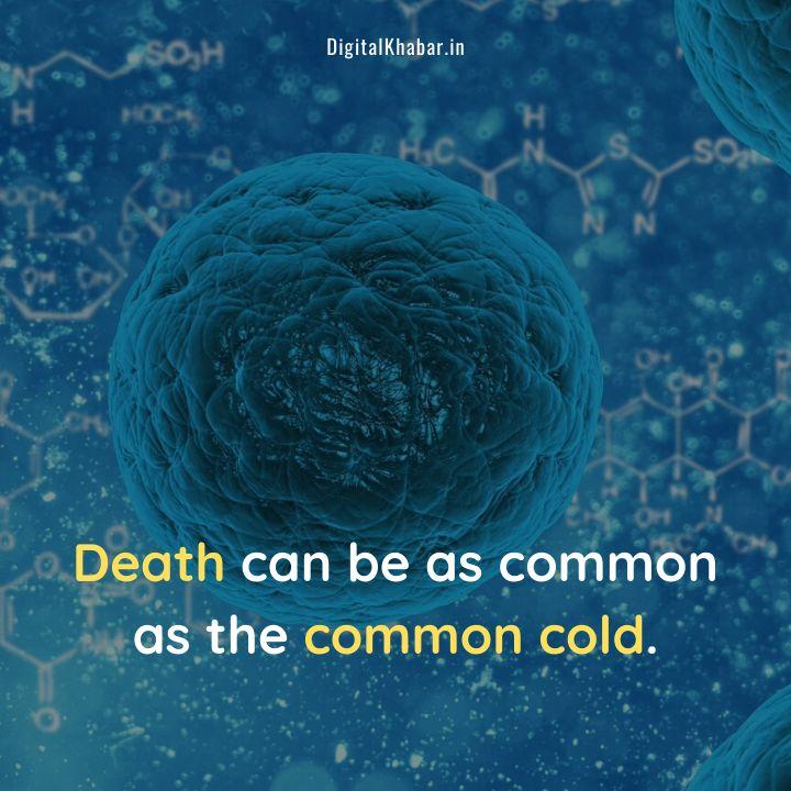 Cotonavirus Status