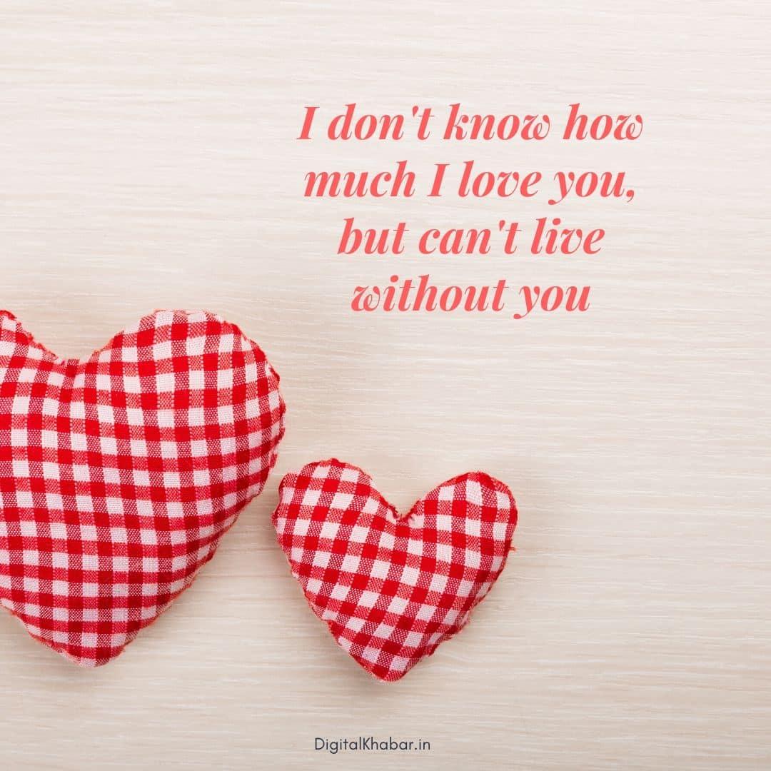 Valentine's Day Status in English